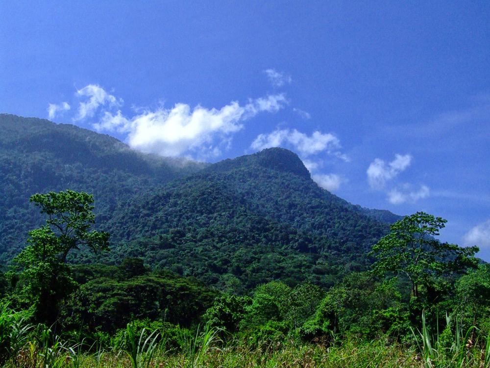 montaña-sorte-yacuy-venezuela